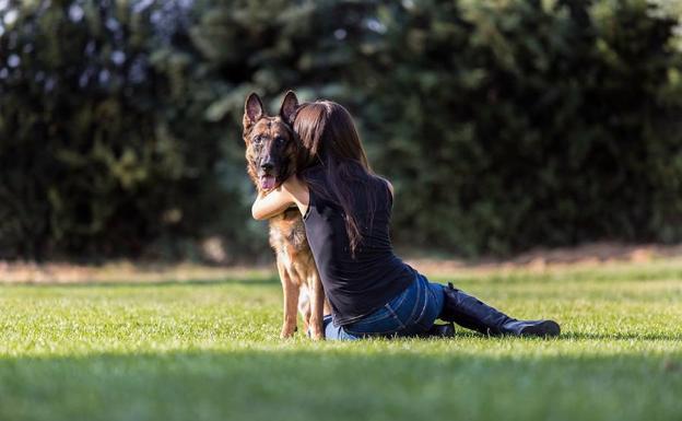 Perros que protegen mujeres