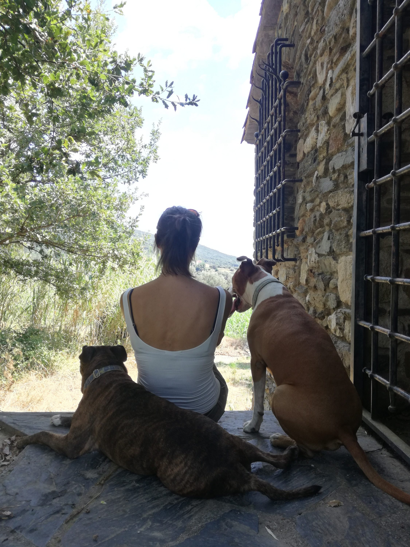 Educadora canina. y dos perros.