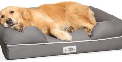 Cama perro con relleno ecológico
